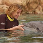 Dolphin Tale:  A Message From Kids To Entrepreneurs