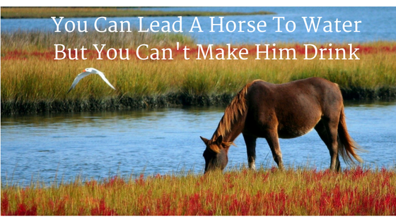 You Can Lead A Horse To Water But You Can't Make Him Drink