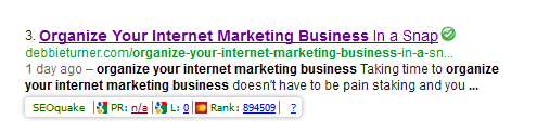 organize your internet marketing business