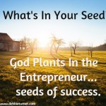 What's in your Seed?