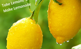 7 Secrets Entrepreneurs Use to Make Million Dollar Lemonade from Life's Lemons